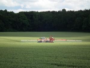 Die Spritzmaschine gegen den hochgewachsenen Weizen.