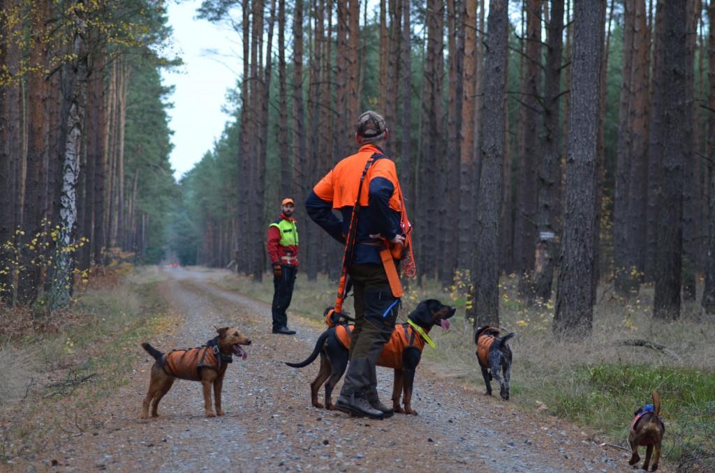 Jagd Hundemeute  Flüssigzucker jagdhun.de Hundeleckerli  (4)