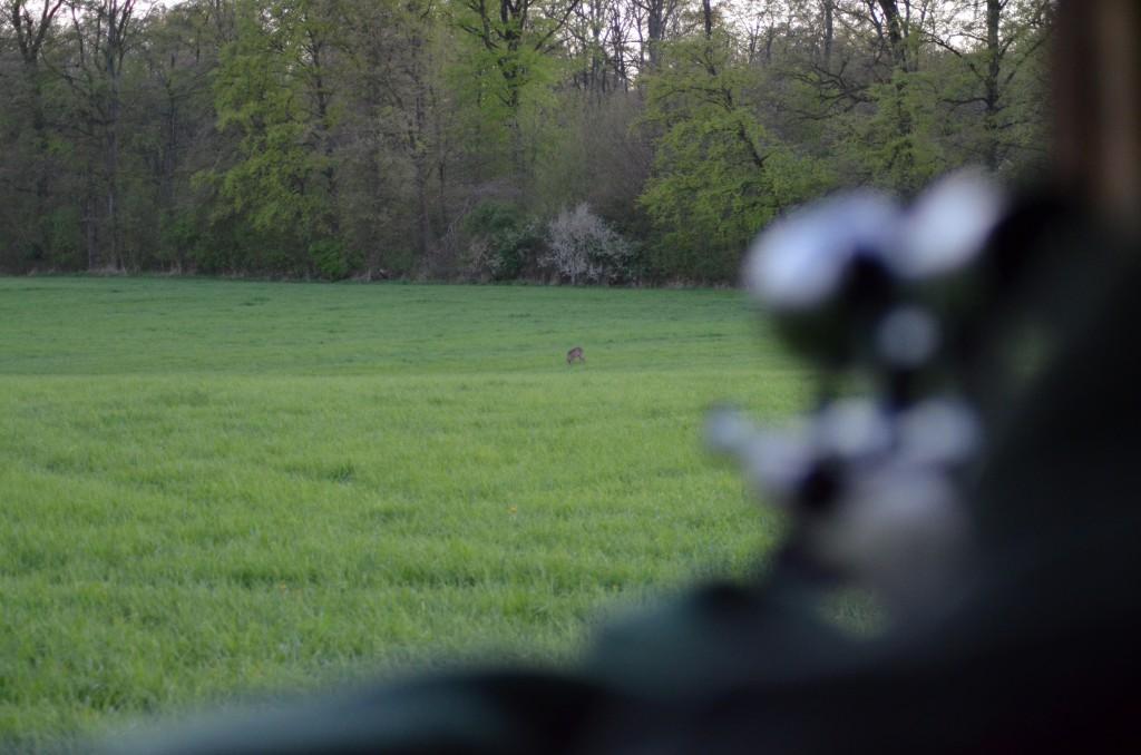 Jagdbüchse im Anschlag