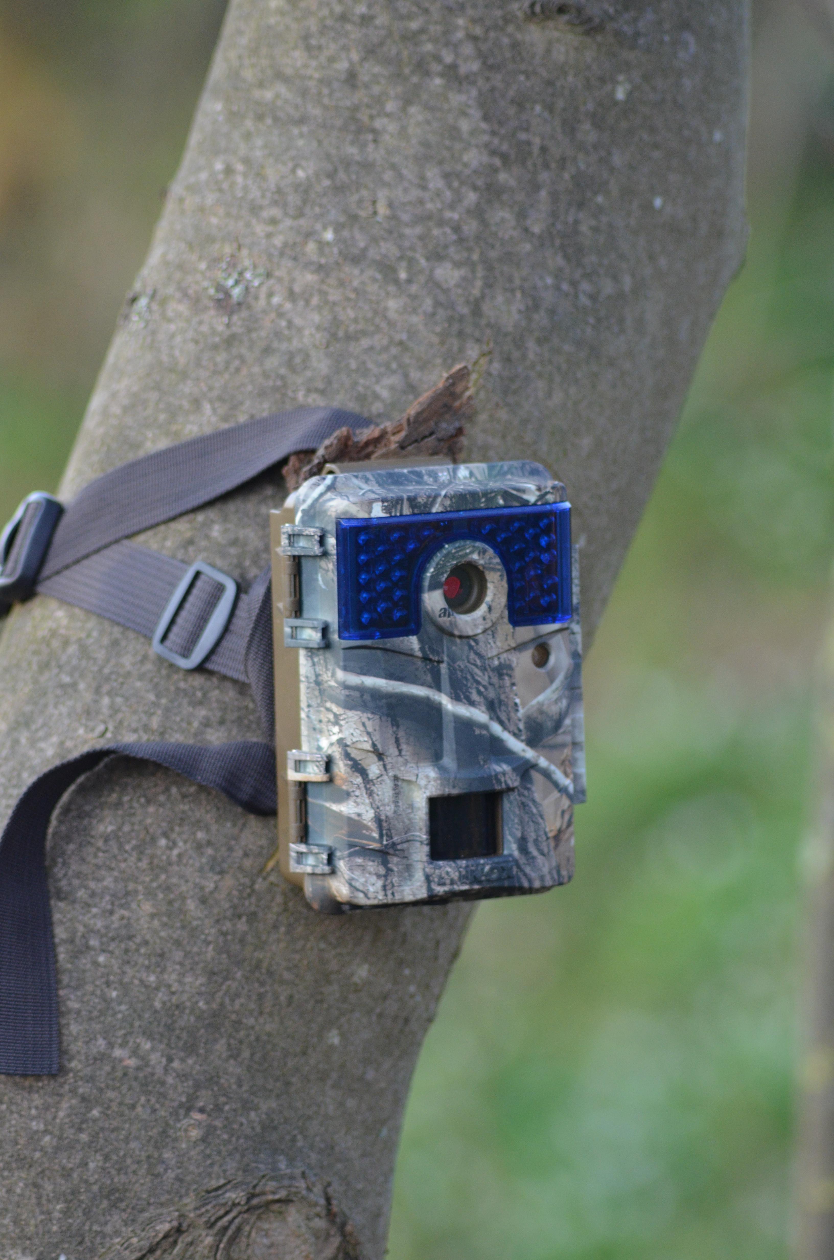 Minox DTC 700 – Die Wildkamera Mit Augen & Ohren