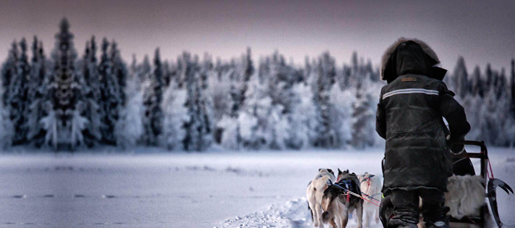 Meine 1.Jagdreise Nach Schweden – Die Vorfreude Wächst …