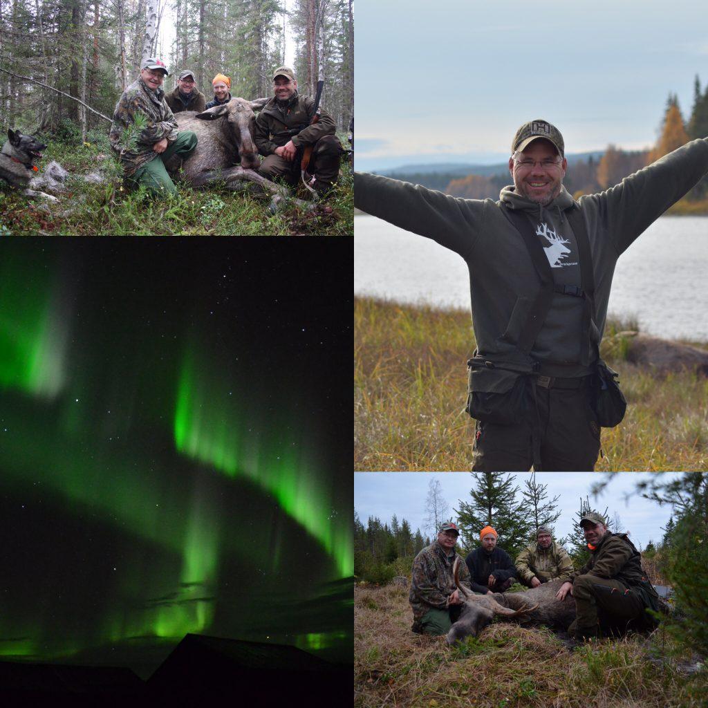Erfolgreiche Jagd Und Am Letzten Abend Zeigten Sich Dann Auch Die Polarlichter