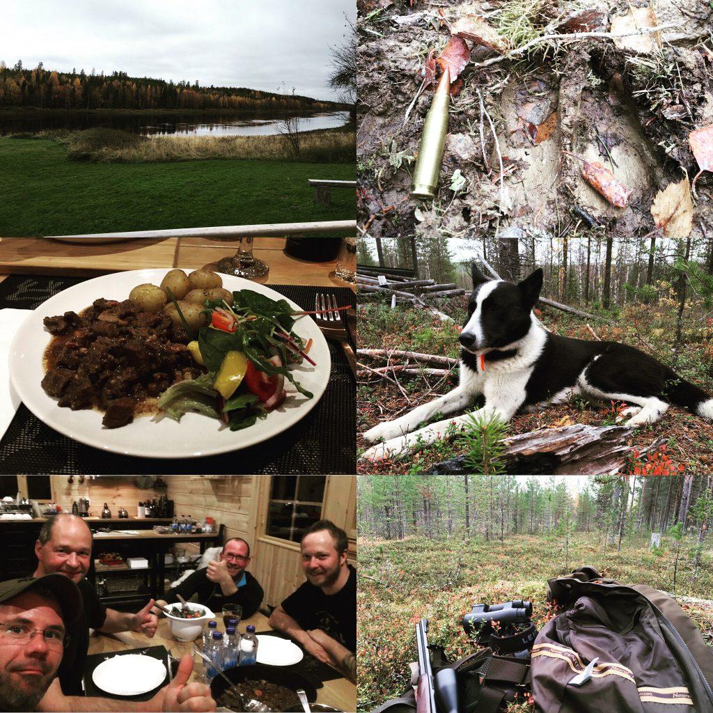 Gemeinschaft, Fantastische Landschaften, Jagd Mit Hunden Und Leckeres Essen (Elch, Rentier, Bär)