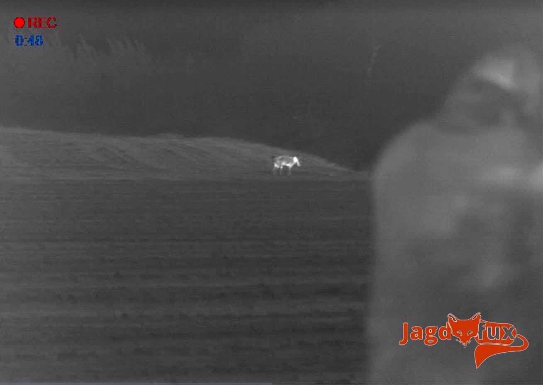 Wärmebildkamera Jagd Mit Entfernungsmesser : Wärmebildkamera mit entfernungsmesser jagd