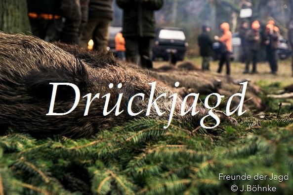 "Jagdfilm ""Drückjagd Im Wilden Osten – Teil 1"