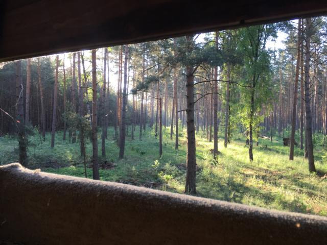 Des Jägers Blick Geht Immer In Richtung Der Natur