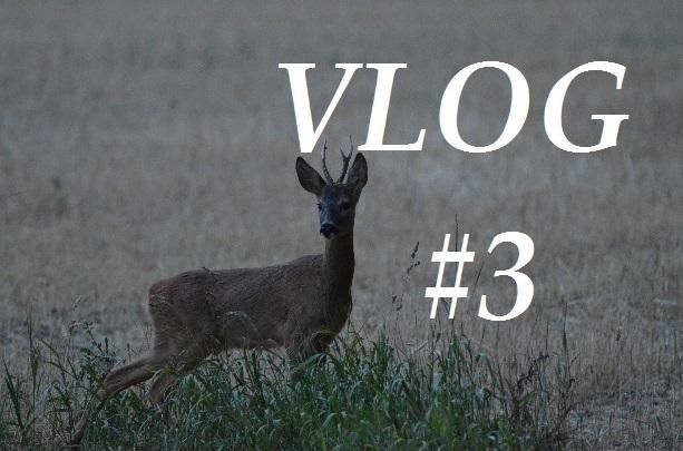 Neuer Jagdfilm Ist Online… Vlog #3
