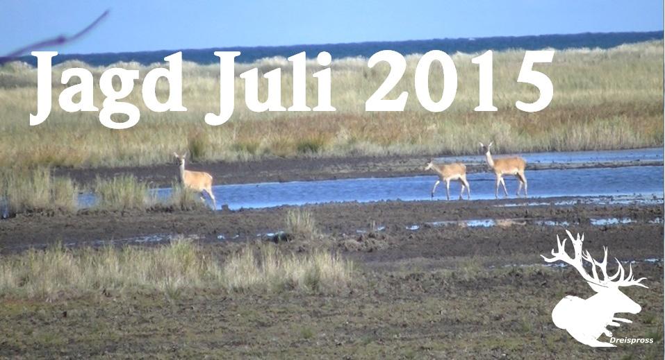 """Meiner Neuer YouTube-Film """"Jagd Im Juli 2015"""""""