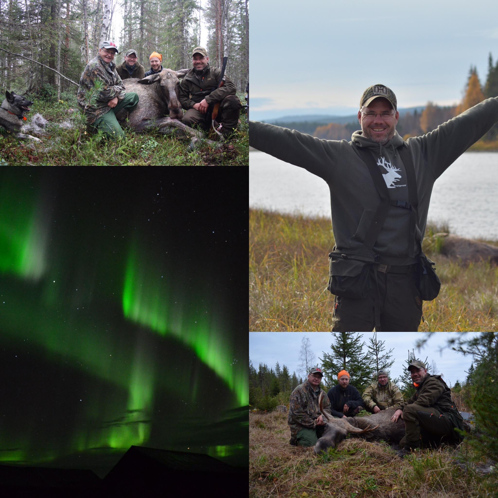 1. Jagdreise Nach Schweden – Ein Kurzes Resumee