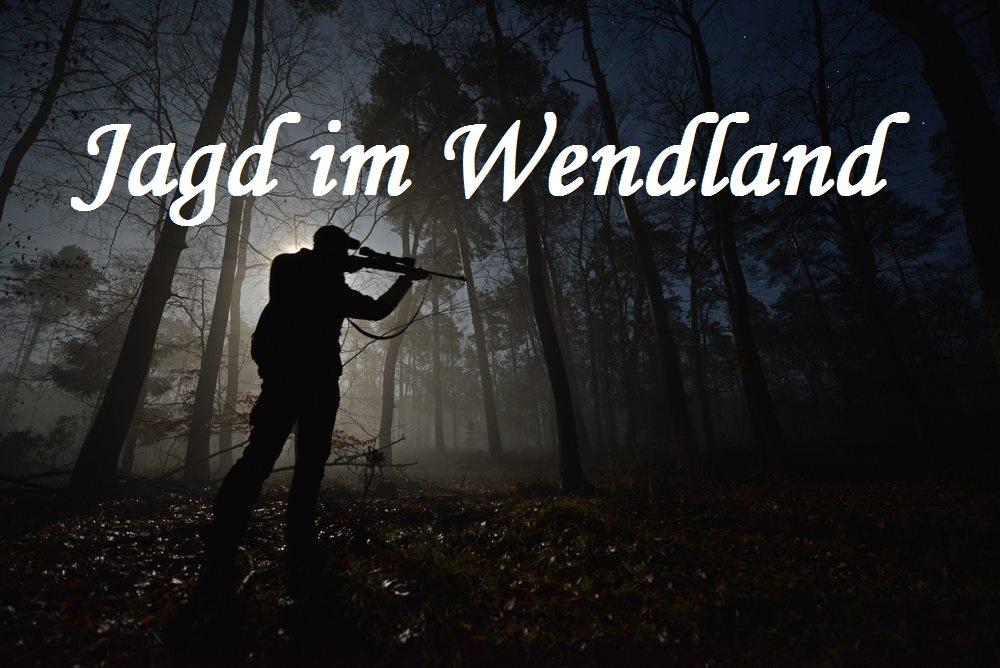 "Video ""Jagd Im Wendland"""