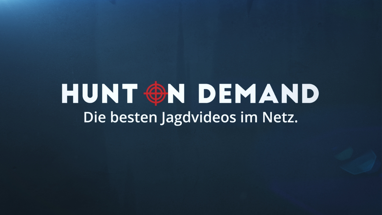 HUNT ON DEMAND