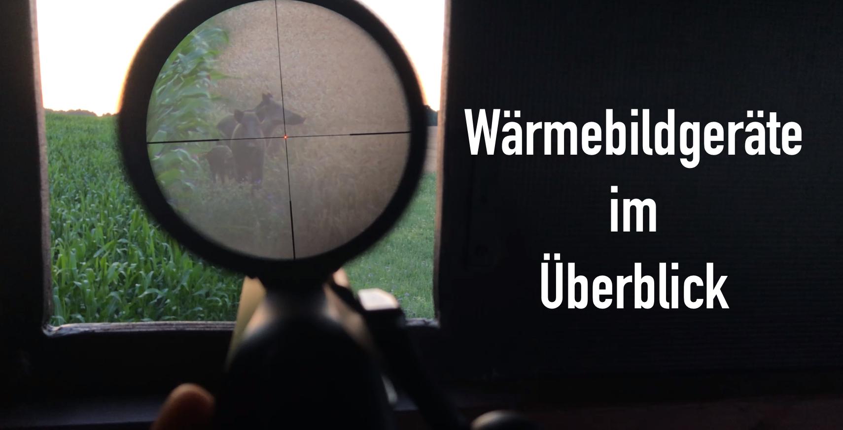 Jagd Auf Wildschweine – Wärmebildgeräte Im Überblick